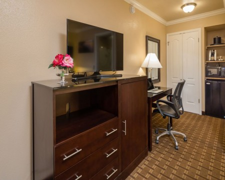Well-Appointed Accessible Room